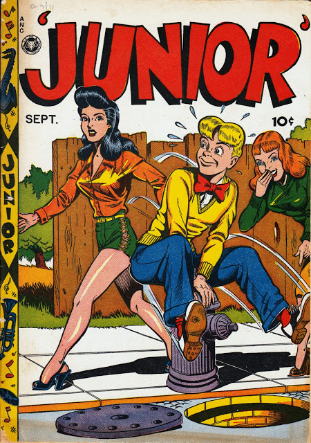 Junior - fireplug cover